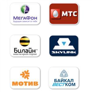 Операторы сотовой связи Пушкинских Гор
